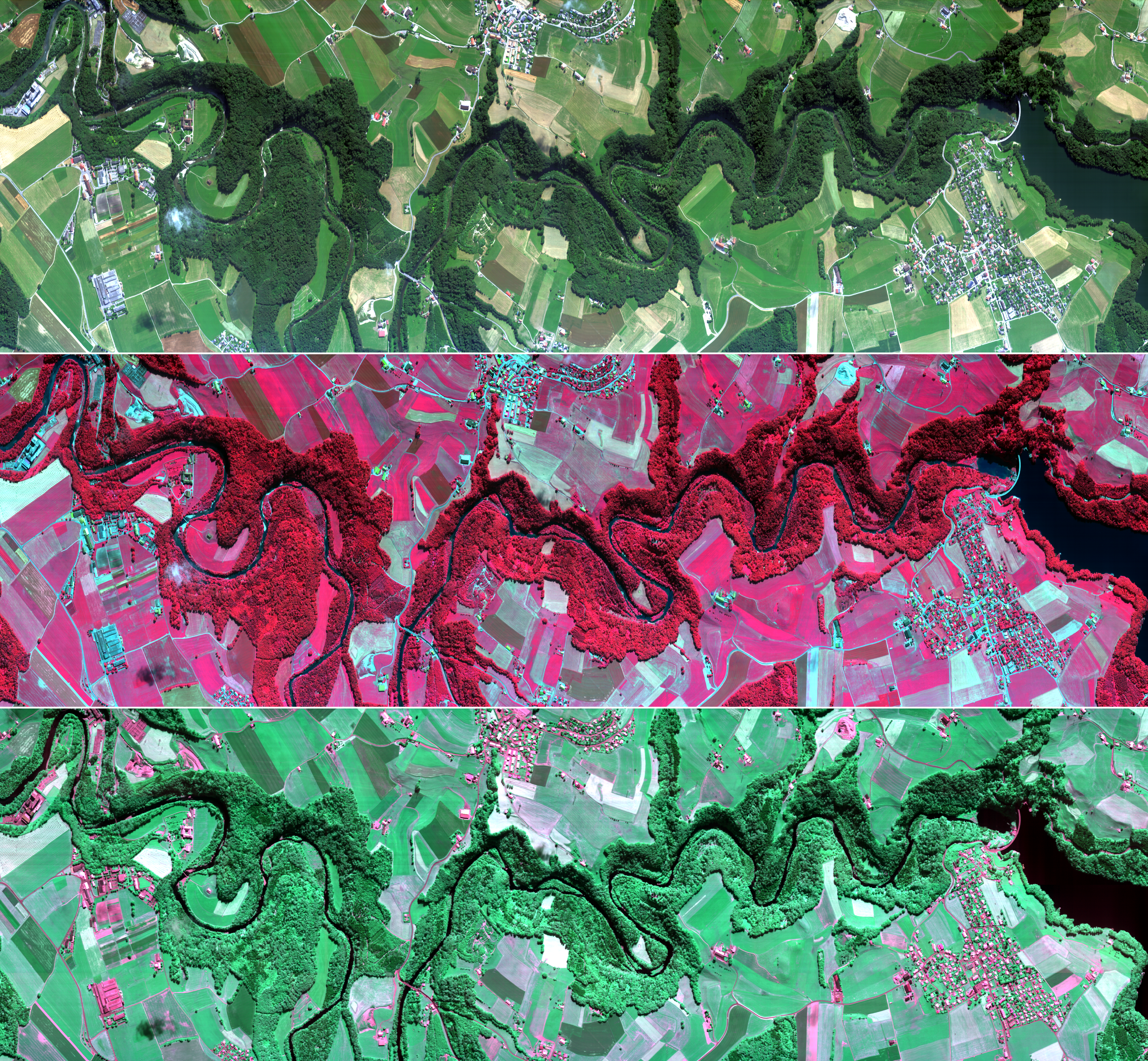 SARIN_a01_RGB_CIR_CHC_Mosaic_Horizontal-1.png