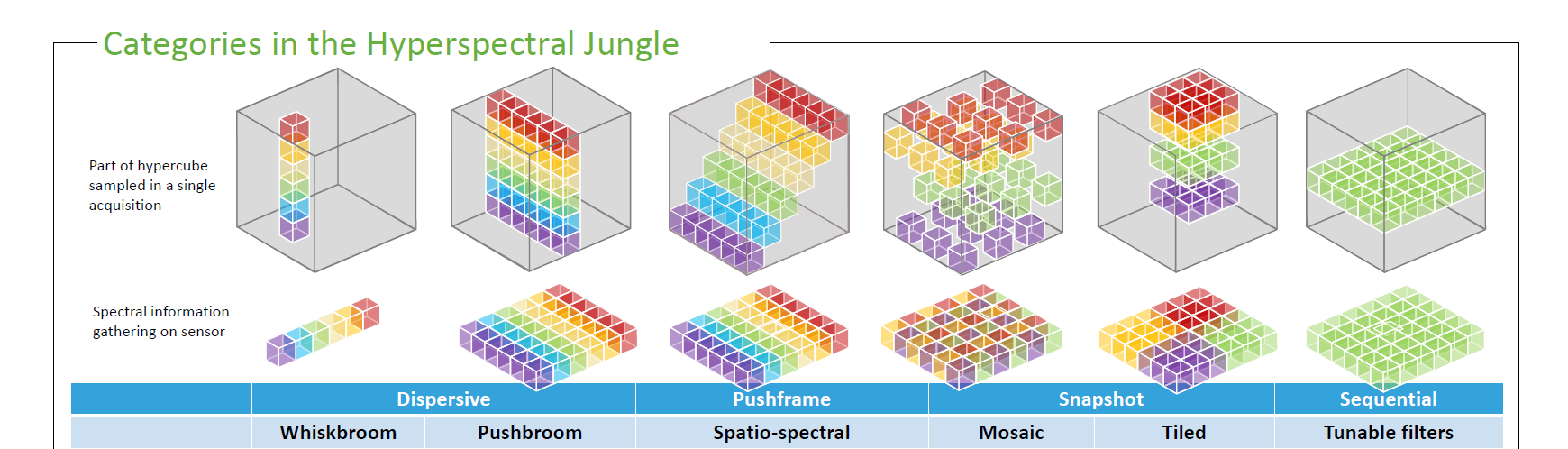 Categories hyperspectral jungle