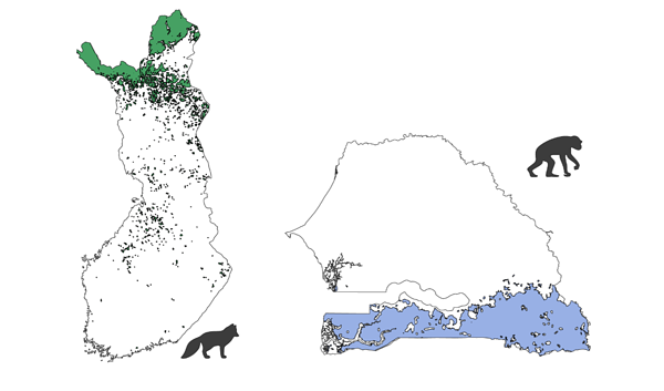 Clusters representing connected potential habitat for Arctic Fox (green) in Finland (left) and Chimpanzee (blue) in Senegal (right).