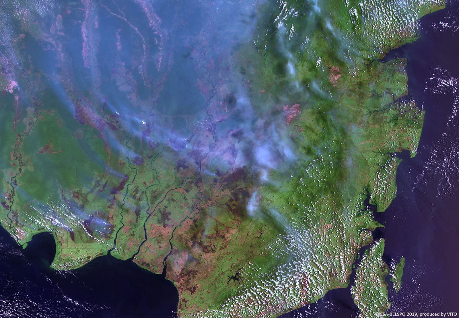 PROBA-V 100 m image of Borneo, Indonesia-min