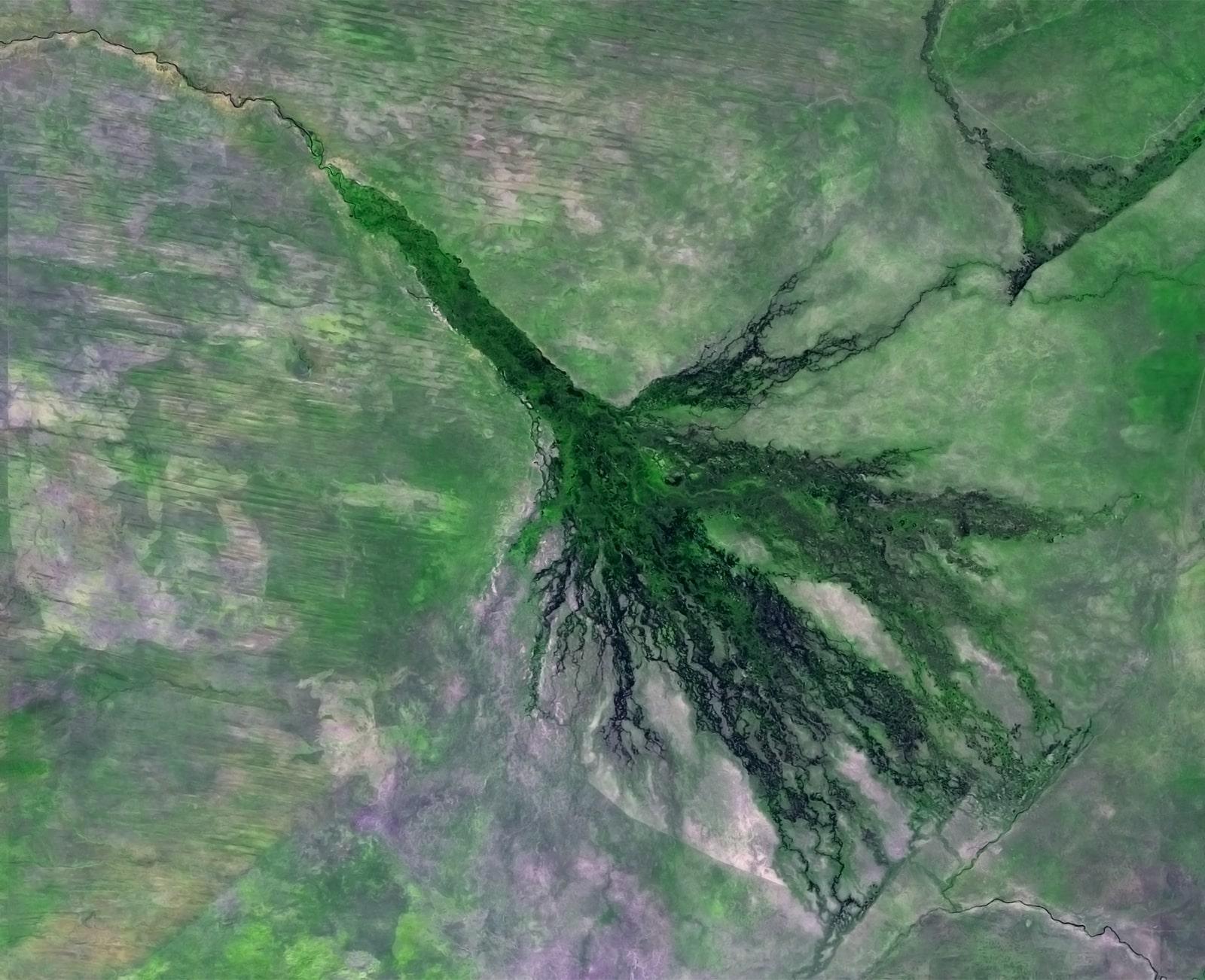 PROBA-V 100 m image of the Okavango Delta, Botswana-min