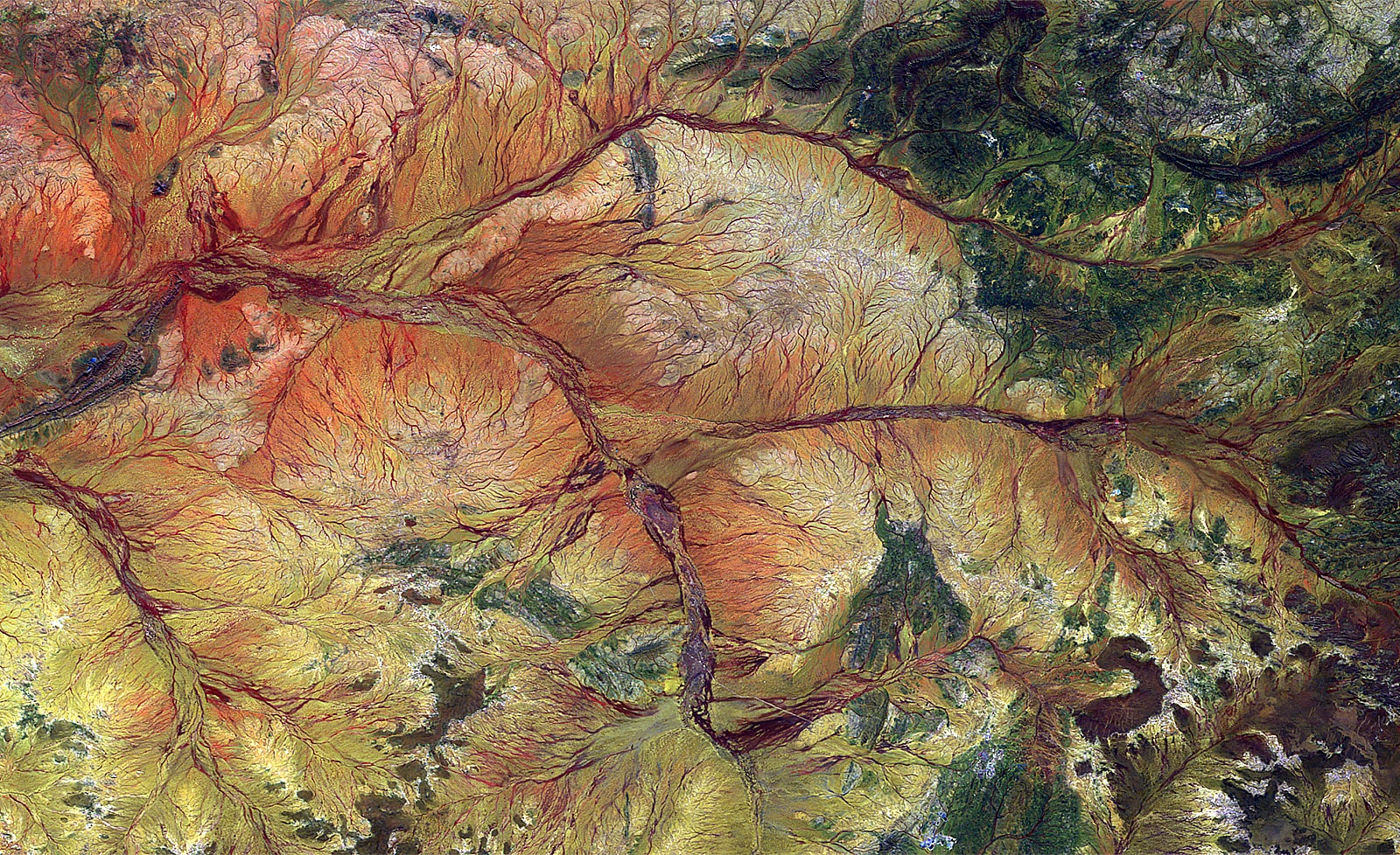 PROBA-V 100 m image of Hope River, Australia