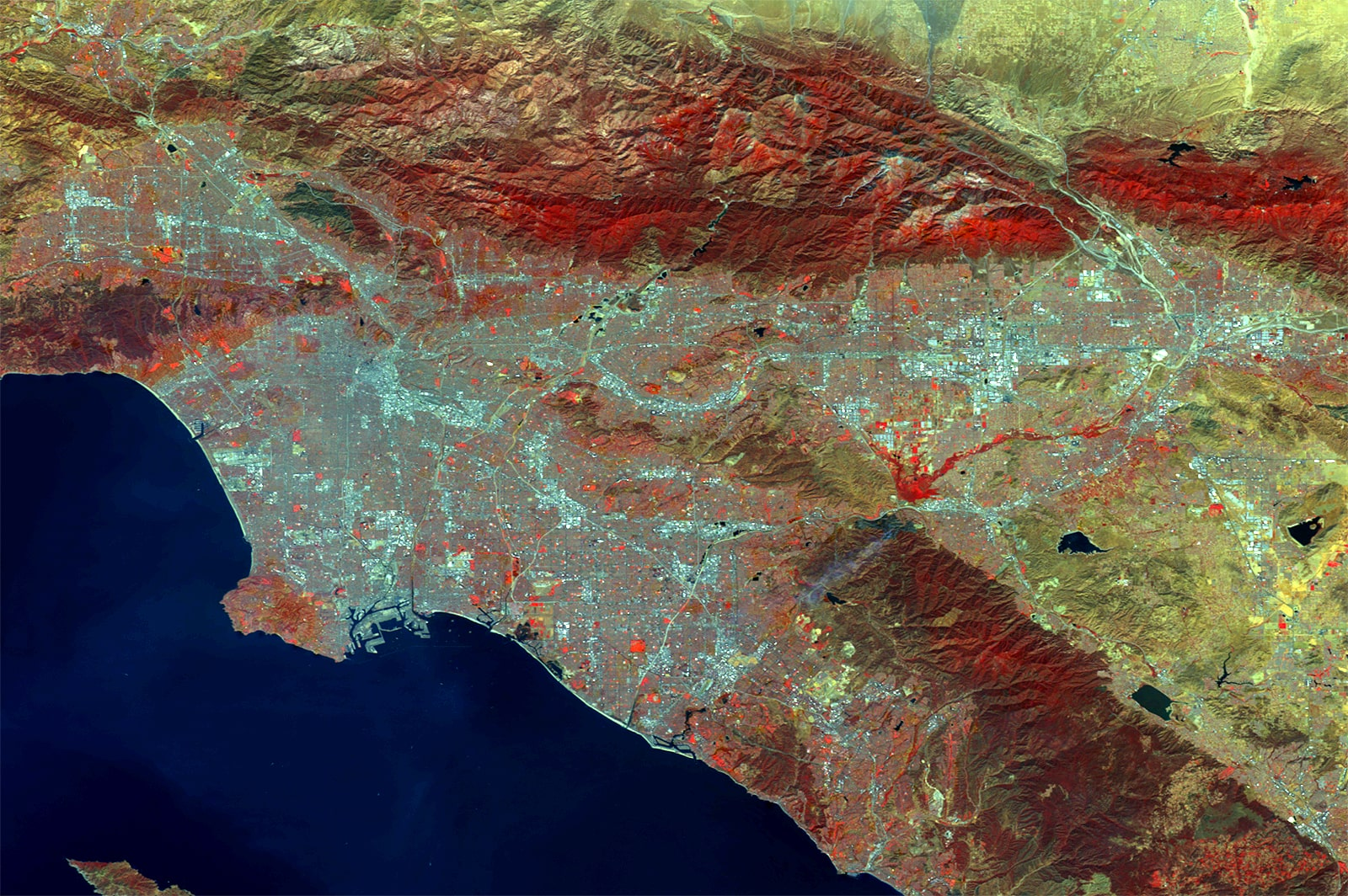 PROBA-V 100 m image of Los Angeles, California