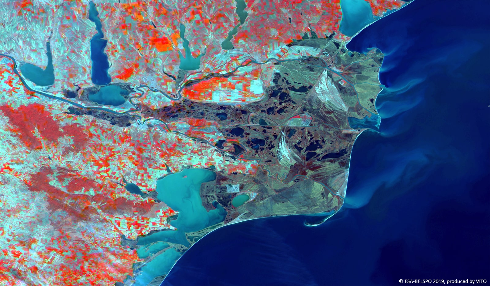 PROBA-V 100 m image of the Danube Delta, Romania