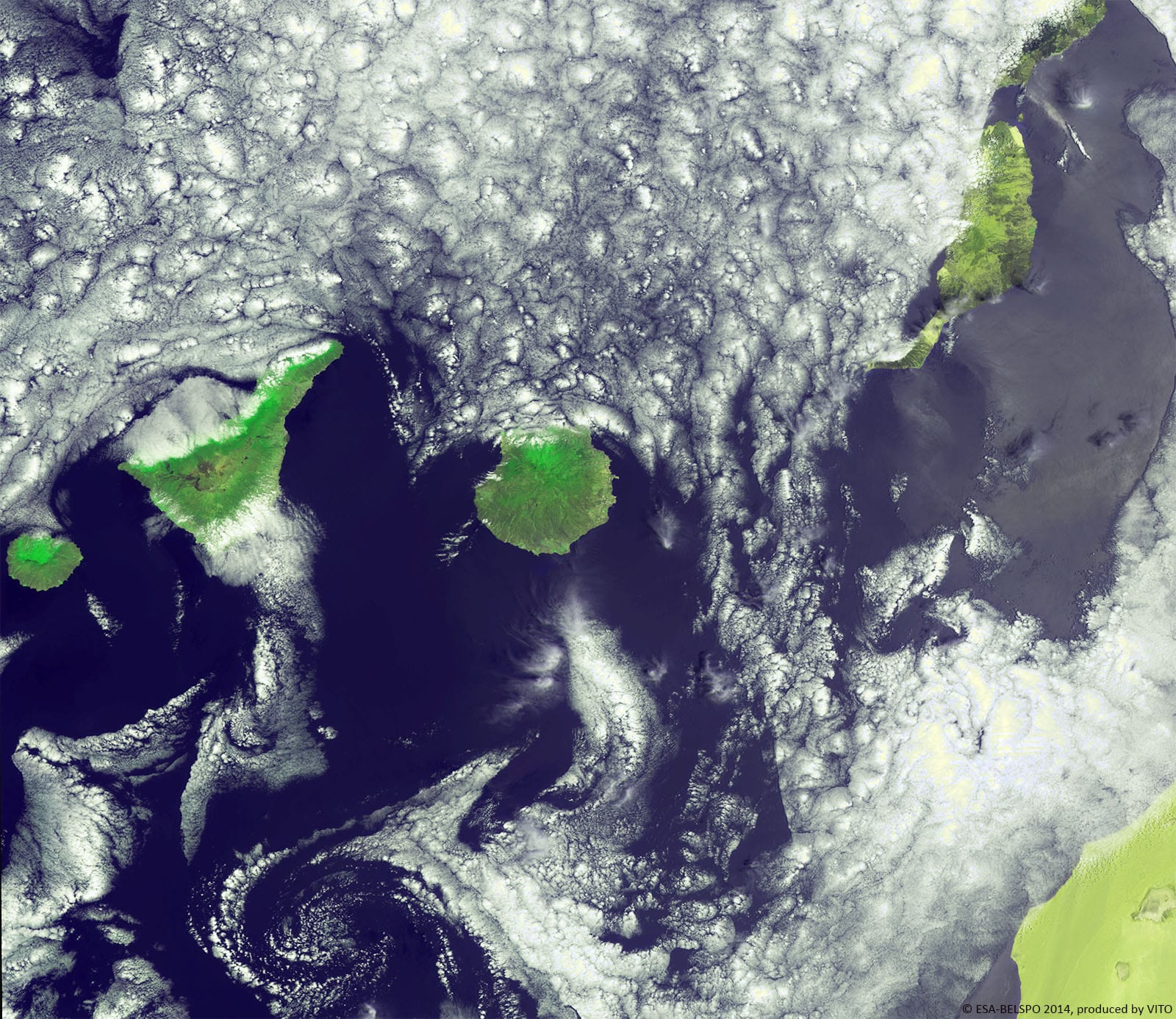 PROBA-V 100 m image of the Canary Islands partially covered  with a couple of von Kármán cloud vortices