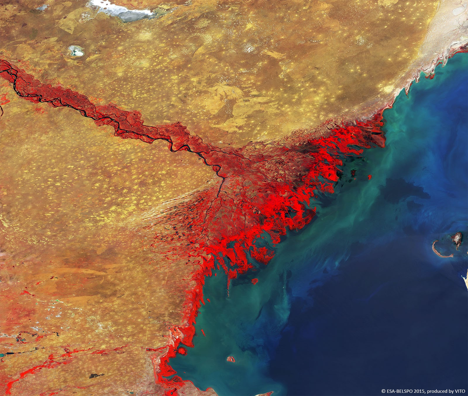 PROBA-V 100 m image of the Volga Delta, the largest river delta in Europe, and occurs where Europe's largest river system, the Volga River, drains into the Caspian Sea in Russia's Astrakhan Oblast-min